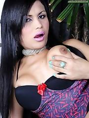 Curvy latin TS babe