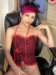 I`d like to introduce newcomer Nikki to Canada Tgirl!